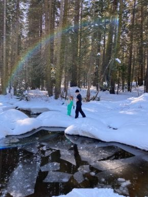 Evergreen Forest Snow and Rainbows (Megan F.)